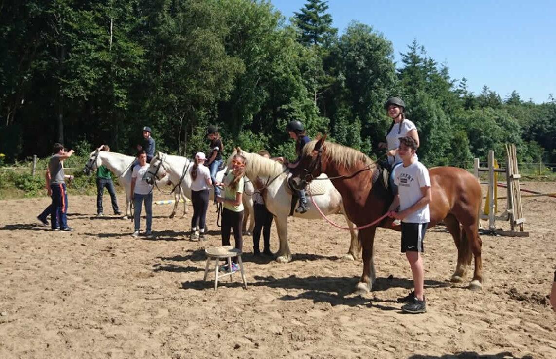 Equestrian life, Ballygarrett